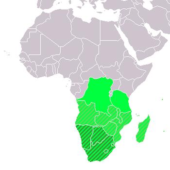 prekybos sistema pietų afrikoje