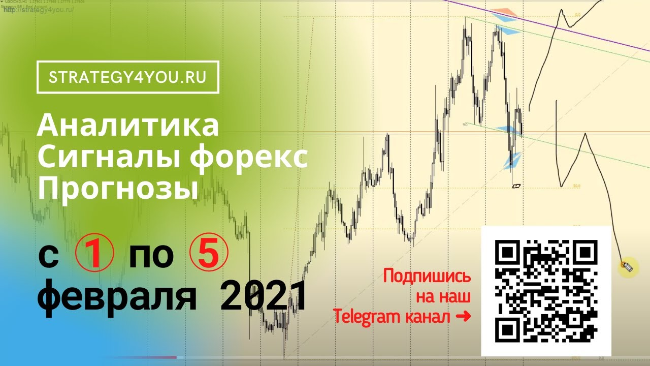 geriausias forex signal perira 2021 m)