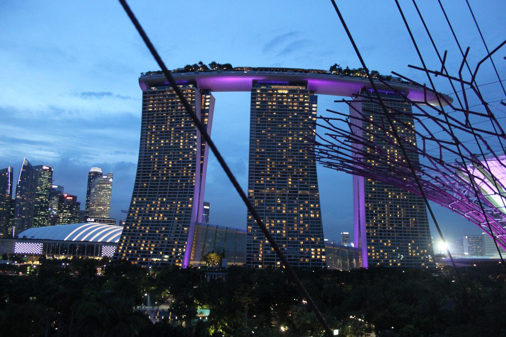 geriausias pasirinkimas prekybos platforma singapūras)