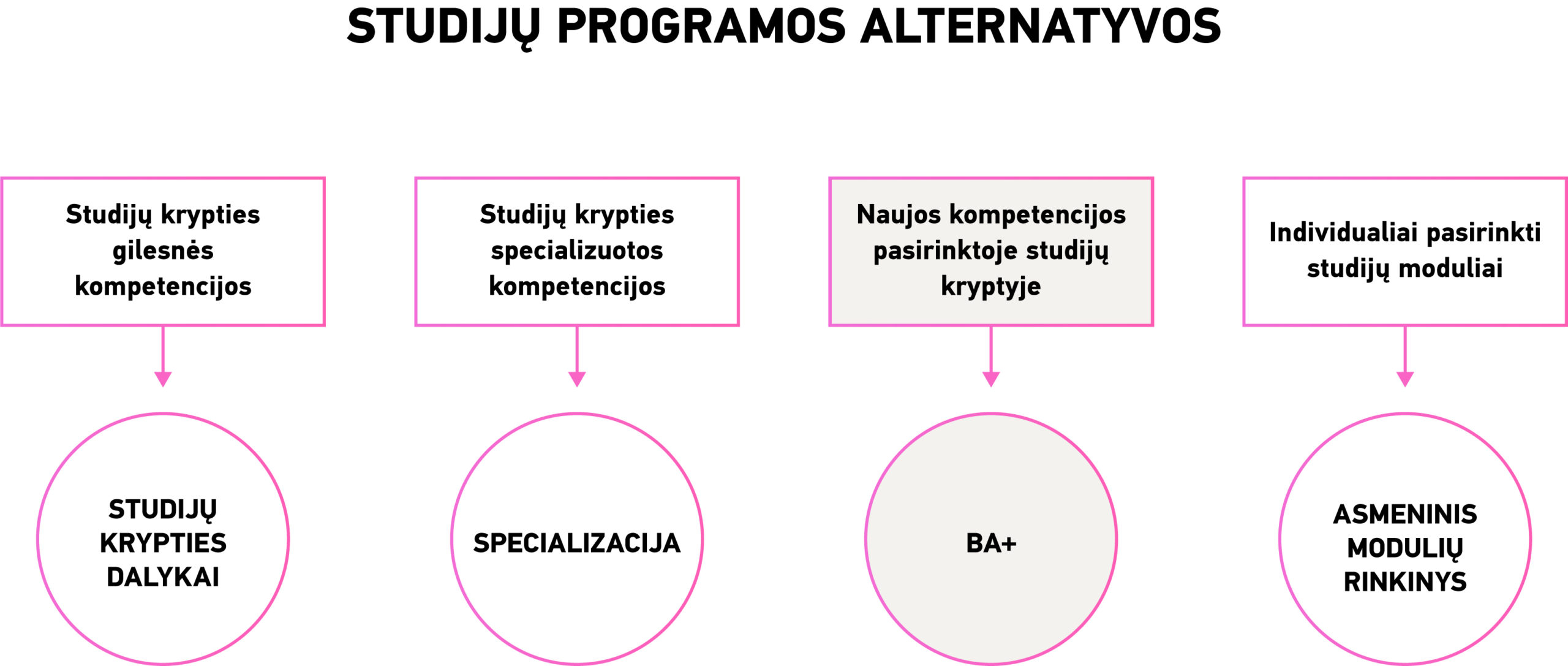 pasirinkimo leidybos supratimo strategijų rinkinys)
