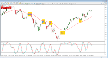 Mcmillan options trader review