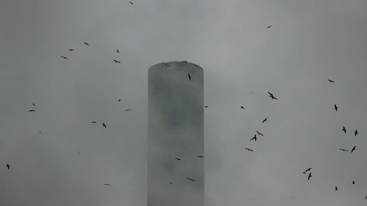 išmetamųjų teršalų prekybos sistemos skrydžiai