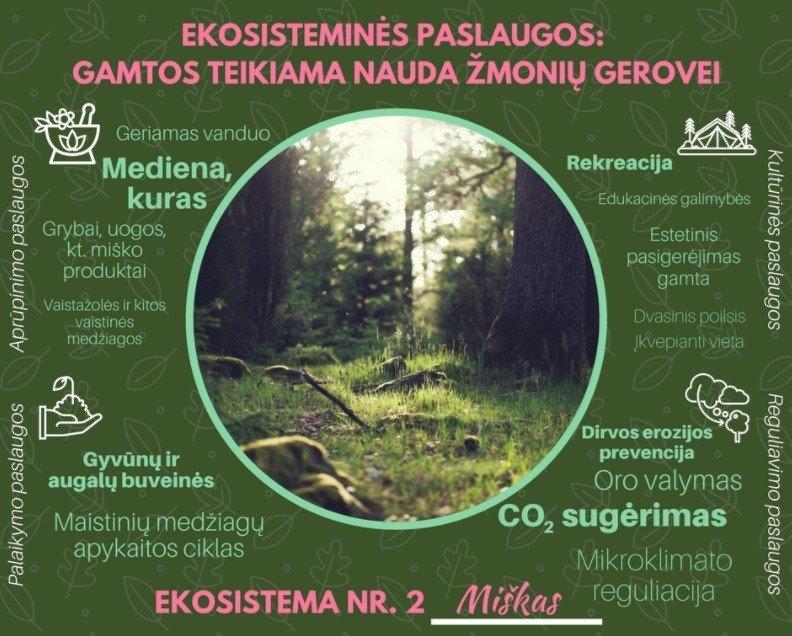 laukinės gamtos prekybos ekosistema