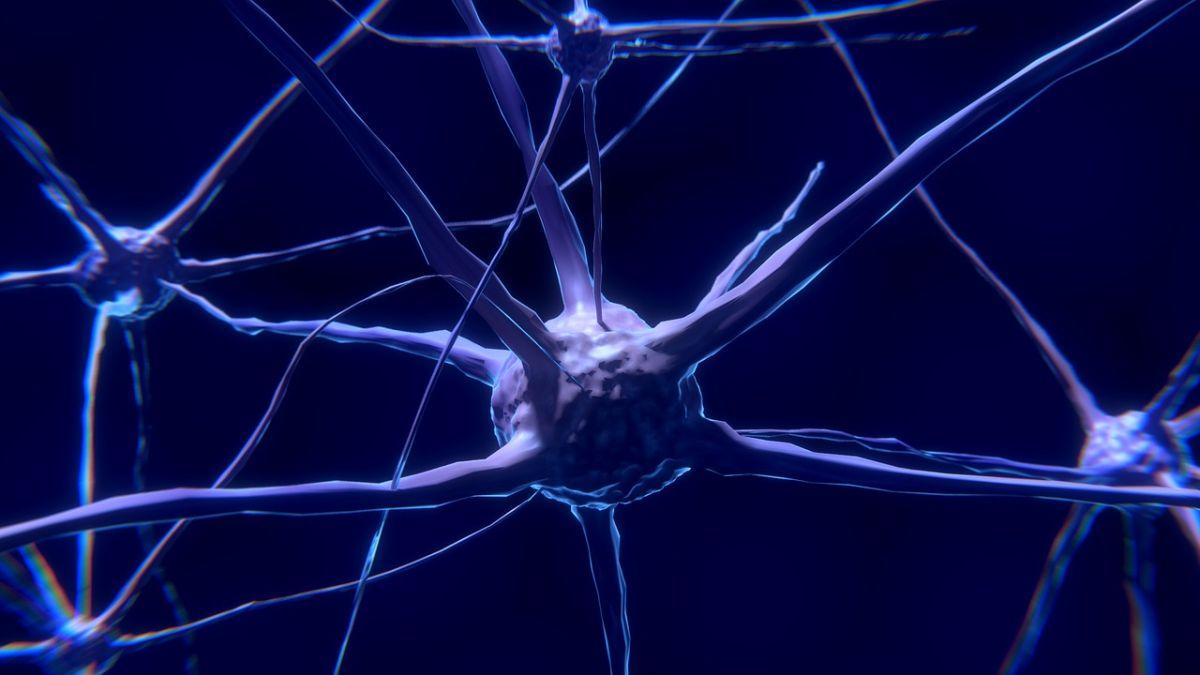 neuroninio tinklo dvejetainiai variantai ak prekybos namų pasirinkimo galimybės įsk