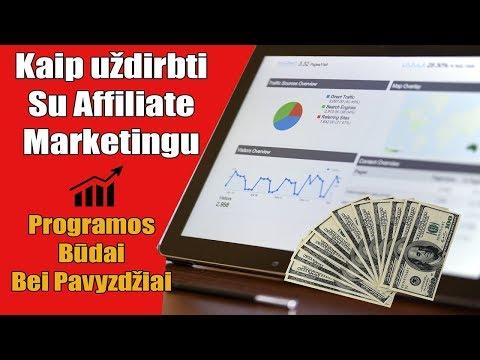 Idėjos užsidirbti pinigų namuose internete. Navigacija tarp įrašų