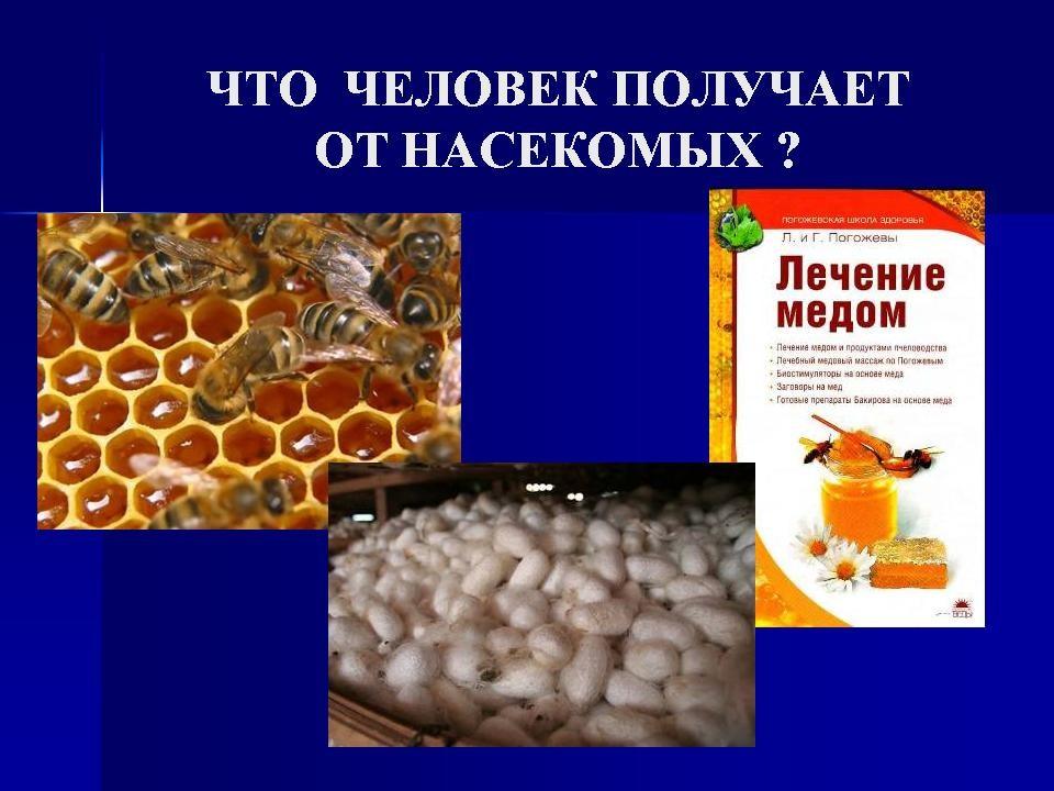 termitai prekybos sistemos suvestinėje